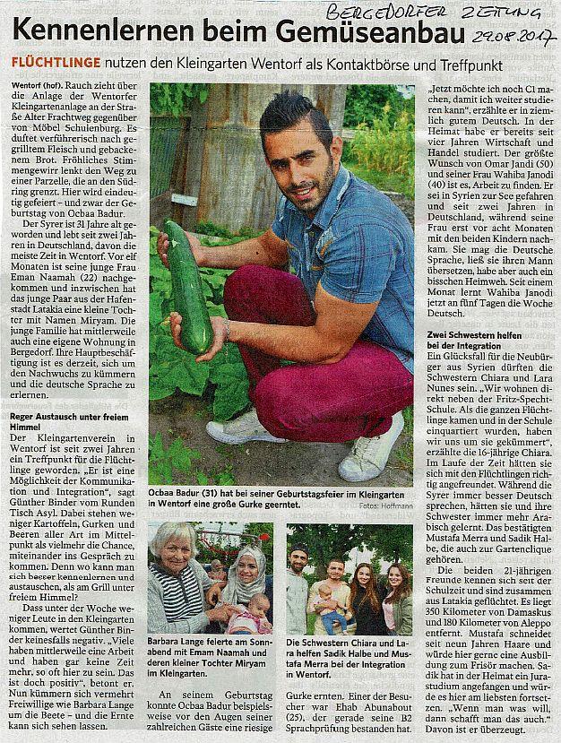 Kleingarten (Bergedorfer Zeitung, 29.08.2017)